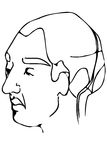Vector эскиз стороны взрослого мужчины Стоковое фото RF