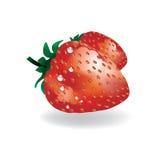 Vector aardbeien Stock Foto's
