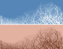 Vector Abbildung der Zweige in zwei Farbenvarianten Stockfotografie