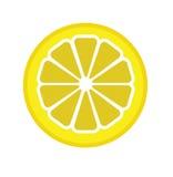 Vector Abbildung des Segments der Zitrone Lizenzfreie Stockfotografie