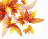 Vector  abstract autumn background with  leaves. Abstract autumn background with  leaves Stock Photography