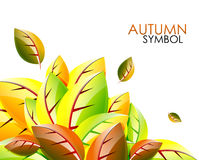 Vector abstract autumn leaf background Royalty Free Stock Photography