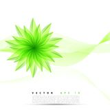 Vector abstract background flower. Brochure design templates collection green stock illustration