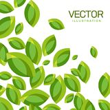 Vector Abstract Background of Green Leaves Stock Image