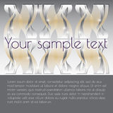 Vector  abstract  background with  place for your text. Royalty Free Stock Photo