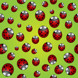 Vector abstract background seamless pattern with ladybugs Stock Photography