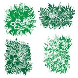 Vector abstract beautiful floral decorations Royalty Free Stock Photos