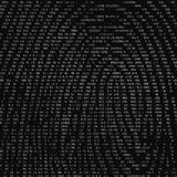 Vector abstract binary representation of fingerprint. Cyber thumbprint grayscale pattern composed of numbers. Royalty Free Stock Image