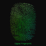 Vector abstract binary representation of fingerprint. Cyber thumbprint green pattern composed of numbers. Stock Photos
