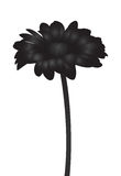 Vector abstract black flower silhouette Stock Photo