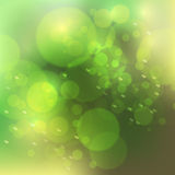 Vector abstract bokeh blur background. Festive defocused lights. Design illustraton graphic for summer party, holiday vacation, green and organic event Stock Photos