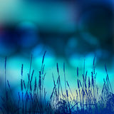 Vector abstract defocused bokeh lights nature spring summer background. Stylish hipster blurry background with bokeh effect for ho Stock Images