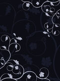 Vector abstract floral background Royalty Free Stock Image