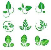 Vector abstract glanzend groen die blad voor organische, natuurlijke, ecologie, biologie, natuurlijke logotypevormen wordt geplaa Royalty-vrije Stock Foto's