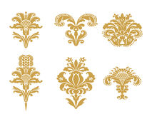 Vector abstract gold set flowers elements design  Royalty Free Stock Image