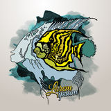 Vector Abstract graphics fish. With grunge background royalty free illustration