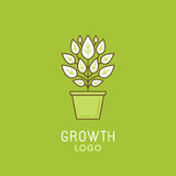 Vector abstract growth logo design element in trendy linear styl Royalty Free Stock Photos