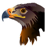 Vector abstract illustration of eagle head Royalty Free Stock Photography