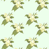 Vector abstract jasmine flower seamless pattern Royalty Free Stock Image
