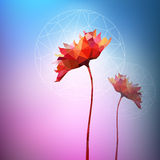 Vector: abstract paper flowers Royalty Free Stock Photos