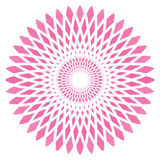 Vector abstract pink circle flower Stock Photo
