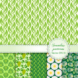 Vector abstract seamless set background with. Vector abstract seamless pattern set with green floral ornament in swatches vector illustration