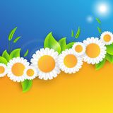 Vector abstract summer time background Stock Image