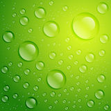 Vector abstract transparent water drops background. Royalty Free Stock Photography