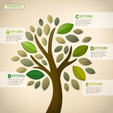 Vector abstract tree infographics Royalty Free Stock Images