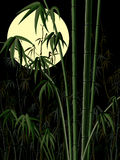 Vertical illustration: bamboo forest at night. Royalty Free Stock Photo