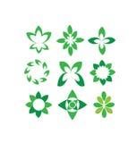 Vector abstracte groene bloemblaadjes, ronde vormen, geplaatste symbolen Royalty-vrije Stock Afbeeldingen