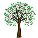 Vector abstracte kersenboom op witte achtergrond stock illustratie