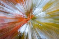 Vector abstracto de la naturaleza Fotografía de archivo libre de regalías
