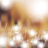 Vector abstrakten defocused bokeh Lichtnaturfrühlings-Sommerhintergrund Undeutlicher Hintergrund des stilvollen Hippies mit bokeh Lizenzfreies Stockfoto