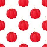 Vector acerola berry seamless pattern. Cherry superfood. Cartoon flat style Stock Photos