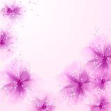 Vector achtergrond met bloemen Stock Foto