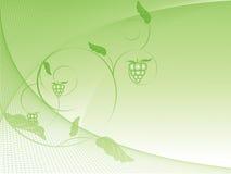 Vector achtergrond met cirves en druif Royalty-vrije Stock Foto's