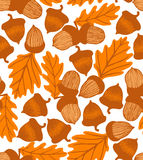 Vector acorn background with oak leaves Royalty Free Stock Photo