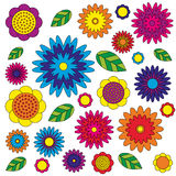 Vector adult coloring book floral pattern colored colorful - flowers and leaves - wildflovers meadow Royalty Free Stock Photography
