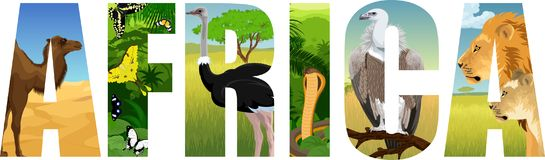 Vector Africa illustration with camel, butterflies, ostrich. cobra snake, Griffon vulture, lion and lioness royalty free illustration