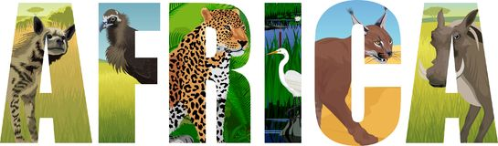Vector Africa illustration with leopard, vulture, Great white heron, striped hyena, caracal and common warthog. Illustration stock illustration