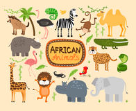 Vector african animals. Set of vector african animals. Predators leopard and lion. Elephant and hippopotamus, giraffe and camel Royalty Free Stock Photography
