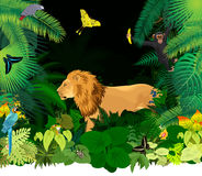 Vector african rainforest jungle with lion and different animals Royalty Free Stock Photos