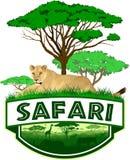 Vector african savannah safari emblem with lioness. Illustration Stock Image