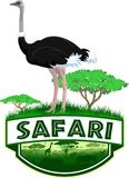 Vector african savannah safari emblem with ostrich. Illustration Royalty Free Stock Image