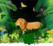 Vector afrikanischen Regenwalddschungel mit Löwe und verschiedenen Tieren Lizenzfreie Stockfotos