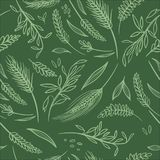 Vector Agriculture Seamless Pattern Stock Images