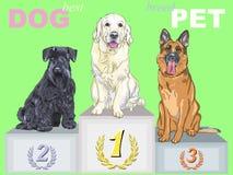 Vector al campeón feliz del perro en el podio Foto de archivo