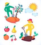 Vector al hombre del ejemplo que planta un árbol y admire el sol jardinero y su jardín debajo del sol caliente Imagen de archivo libre de regalías