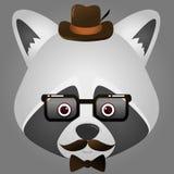 Vector al inconformista de la imagen de los vidrios que llevan y del sombrero de una cara del mapache Fotos de archivo
